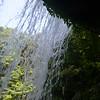 Behind Wright Creek Falls