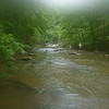 Along the Toxaway River