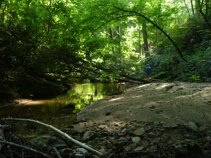 Early in the hike, as our group begins its trek upstream along and in Rock Creek.