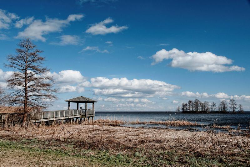 Lake Mattamuskeet Observation Spot