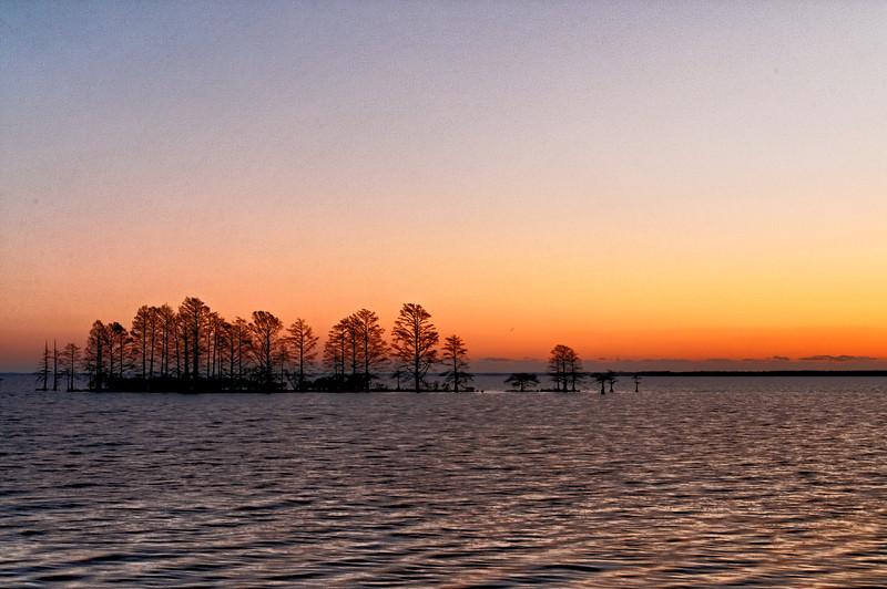 Cypress Sunrise - Lake mattamuskeet