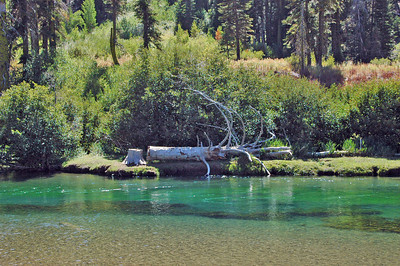 Truckee River between Lake Tahoe and Squaw Valey.