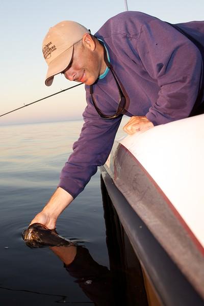 Professional guide Steve Boyd returns an 8 lb largemouth freshwater bass into Lake Toho, Kissimmee, Florida. USA