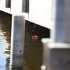 bobber float under a dock walkway.