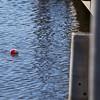 bobber float near a dock walkway.