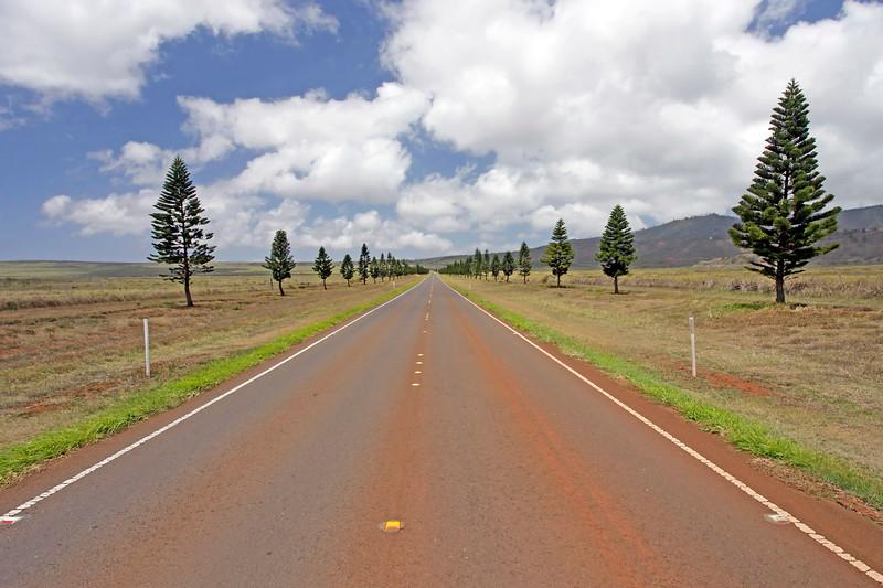 Palawai Basin Road -  Lana'i, Hawaii