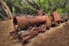 Maunalei Sugar Company Locomotive - Island of Lana'i - Hawaii