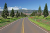 Palawai Basin Road -  Lana'i, Hawaii