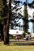 Dole Park - 565 Cafe - Lana'i, Hawaii