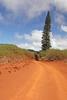 Road From Keahiakawelo (Garden of the Gods) to Lana'i City - Lana'i, Hawaii