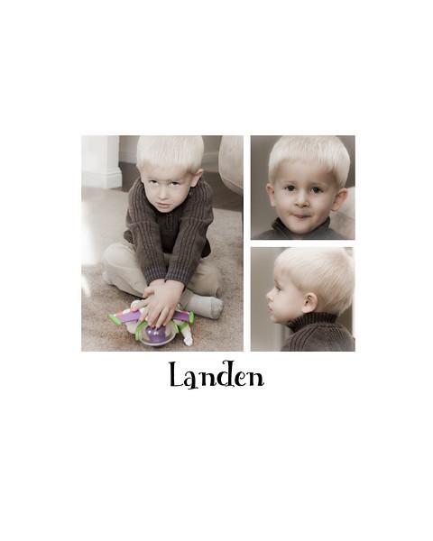 Landen_collage_2