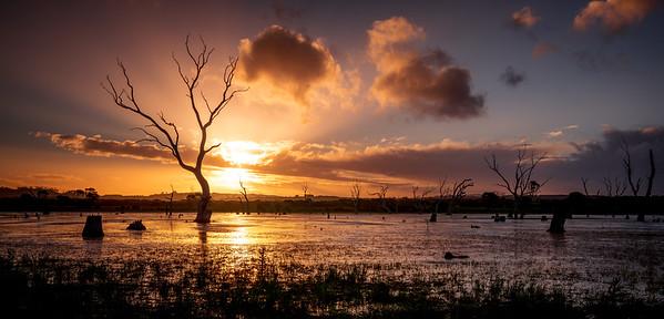 Kangaroo Island.