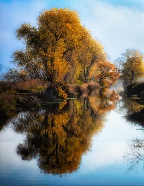 Grey Lodge Autumn