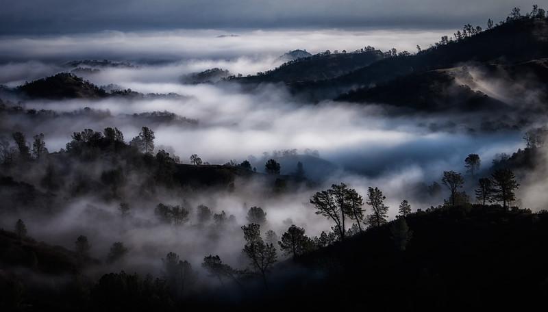 Paskenta Morning fog