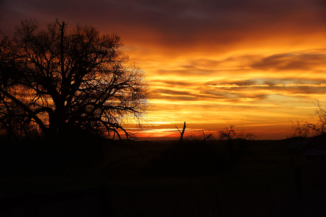 A very lucky morning sunrise shot.