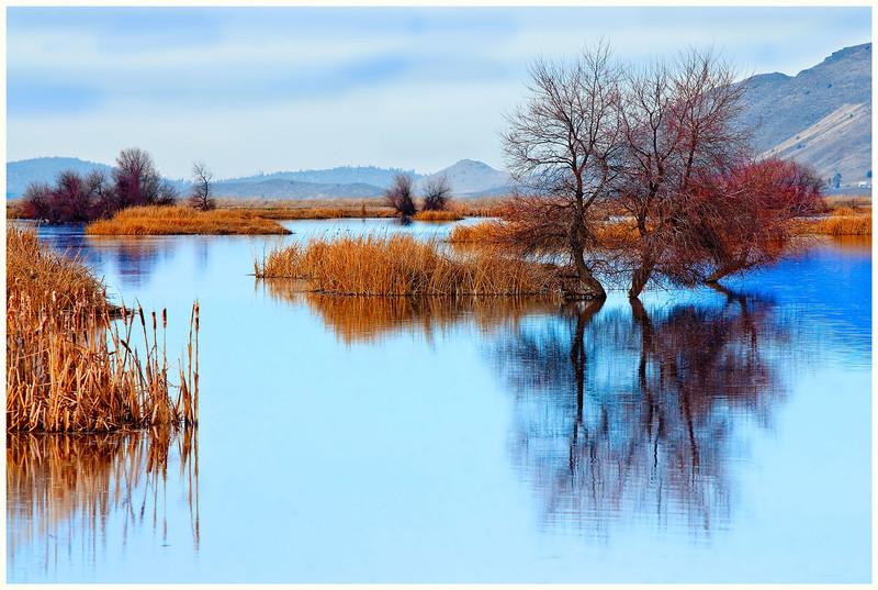 Klamath Pond