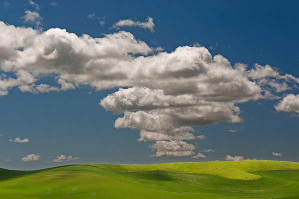 Palouse County WA