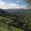 IMG_1738e Gorilla Valley