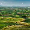 Palouse County WA from Steptoe Butte