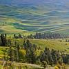Palouse County WA from Steptoe Butte