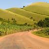 _DSC3461e Landscape Hill & Banana Crop