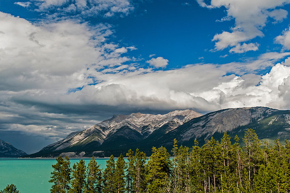 The emerald water of Abraham Lake attests to its' glacial origins.