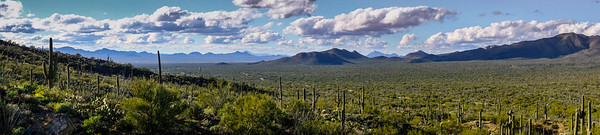 View from hill in Tonto National Forrest - 19