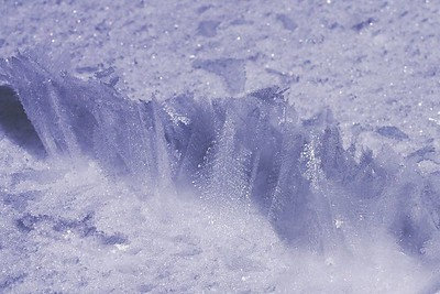 Tiny Snow Crystals