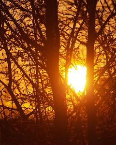Sunrise 03-25-07