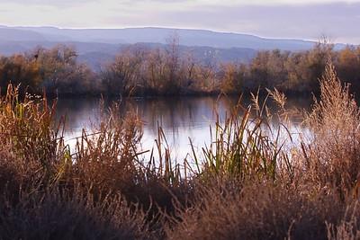 Twilight on the Pond