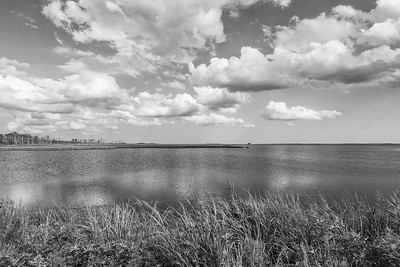 Blackwater Landscape - Monochrome