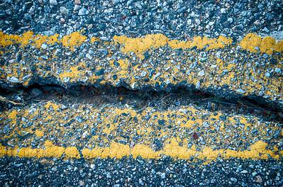 Crack in Road Asphalt