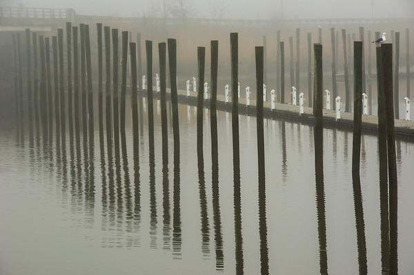Pilings/Reflections