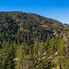 Forested Mountaintops in California