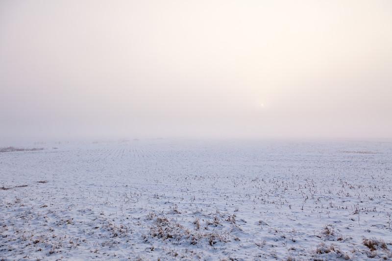 Holla Bend Snowfall _MG_9412