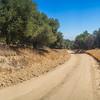 Bend in Dirt Road