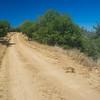 Long Dirt Wilderness Road