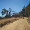 California Hillside Dirt Road