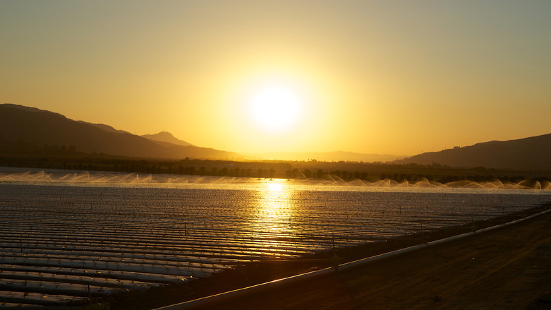 Sunset over Farm Fields