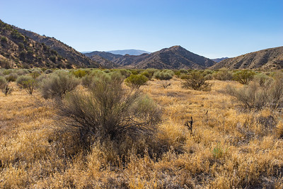 Hungry Valley Recreation Area