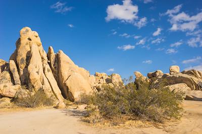 Johnson Valley Desert
