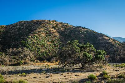 California Riverbed Canyon