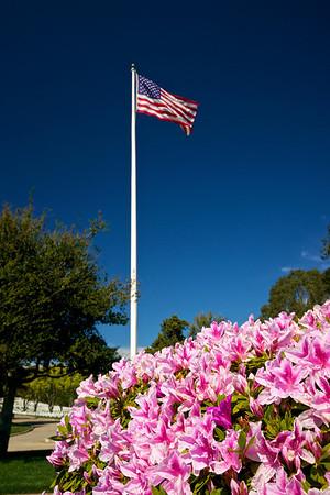 American Flag flies over Garden