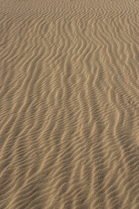 Vertical Lines of Sand Waves