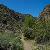Panorama of California Hiking Trail