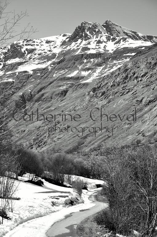 Springtime Alps