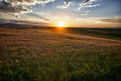 Sunset over the fields of Idaho (HDR).