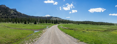 Road through Green Mountain Meadow