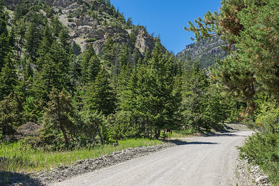 Gravel Road into Western Wilderness