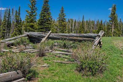 Log Cabin Poles